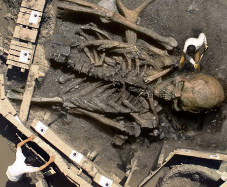 giants: fact or fiction., Skeleton